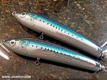 Carpenter Bluefish 45-150 Lure