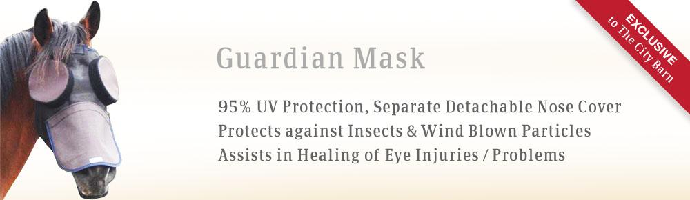 bslide-guardian-mask2.jpg