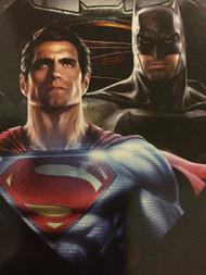 Superman VS Batman 'Gotham Heroes' Throw Blanket