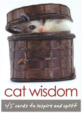 Cat Wisdom Cards by Toni Carmine Salerno
