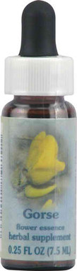 Flower Essence Healing Herb® Gorse Supplement Dropper -- 0.25 fl oz