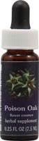 Flower Essence Poison Oak -- 0.25 fl oz