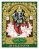 The Sacred World Oracle by KRIS WALDHERR Elephant