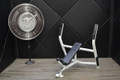 Used Cybex Olympic Incline Bench
