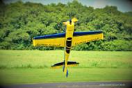 "Extreme Flight 60"" Yak- Blue/ Yellow"