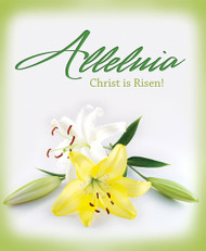 Legal Easter bulletin (sold in units of 50) 14-1410