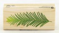Pine Leaf Wood Mounted Rubber Stamp Inkadinkado