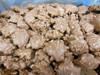 Milk Chocolate Carmel Pecan Clusters 1 LB. Zachary Sale 2 for 1