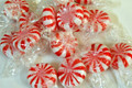 Sugar Free Peppermint Starlight Mints 1Lb