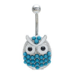 Blue Owl Belly Bar