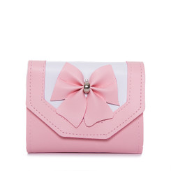 Small Bow Chain Purse
