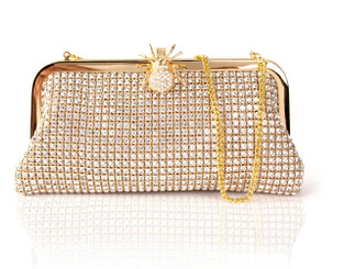 Gold Spider Clasp Crystal Bag