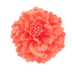 Orange Peony flower fascinator