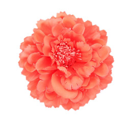 Orange Peony flower fascinator