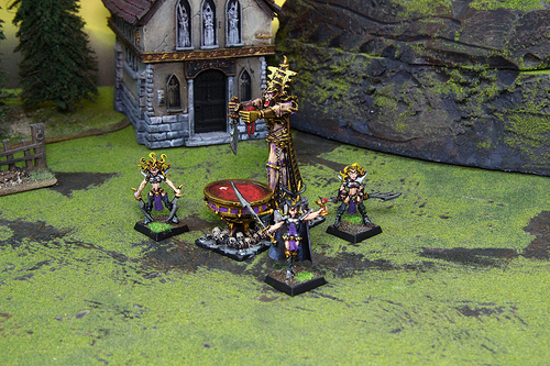 Dark Elves Miniatures for Warhammer Fantasy War Game