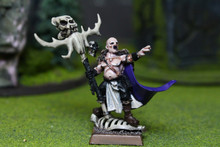 Vampire Counts Necromancer Lot 6782 Blue Table Painting Store