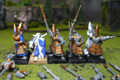 High Elf Spearmen Lot 7896 Blue Table Painting Store