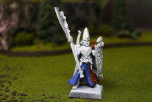 High Elf Hero Lot 7911 Blue Table Painting Store