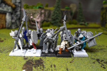 Vampire Counts Skeletons Lot 7940 Blue Table Painting Store