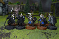 LOTR Warriors of Minas Tirith Lot 7949 Blue Table Painting Store