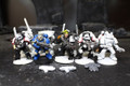 Space Marine Tactical Marines Lot 7992 Blue Table Painting Store