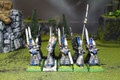 High Elf Swordmasters Lot 8599 Blue Table Painting Store