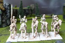 Tomb Kings Skeleton Cavalry Lot 8901 Blue Table Painting Store