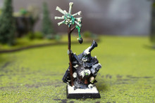 Warriors of Chaos Nurgle Sorcerer Lot 9813 Blue Table Painting Store