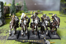 Warriors of Chaos Marauder Horsemen Lot 9817 Blue Table Painting Store