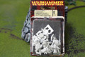 Dwarf Slayer Command Lot 9886 Blue Table Painting Store