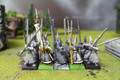 High Elf Spearmen Lot 9895 Blue Table Painting Store