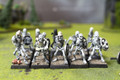Vampire Counts Skeletons Lot 10919 Blue Table Painting Store