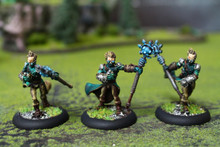 Cygnar Stormsmith Stormcallers Lot 11068 Blue Table Painting Store