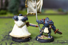 Cygnar Stormblade Officer and Standard Lot 11070 Blue Table Painting Store