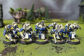 Cygnar Sword Knights Lot 11074 Blue Table Painting Store
