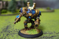 Cygnar Defender Lot 11090 Blue Table Painting Store