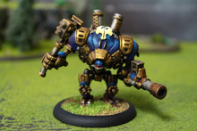 Cygnar Defender Lot 11091 Blue Table Painting Store
