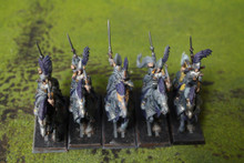 High Elf Ellyrian Reavers Lot 11132 Blue Table Painting Store