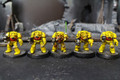 Space Marine Terminators Lot 11148 Blue Table Painting Store