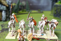 Tomb Kings Skeleton Cavalry Lot 11219 Blue Table Painting Store