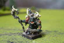 Confrontation Orc Mystic of the Behemoth Lot 11272 Blue Table Painting Store