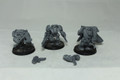 Space Wolf Terminators x3 Lot 13646