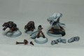 Circle Orboros Kaya battlegroup Lot 13714