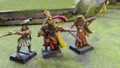Empire Freeguilds Heroes x3 painted Lot 15286