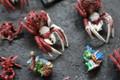 Spier Rider Goblins Lot 15319