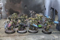 Deathguard x7 painted Lot 15558