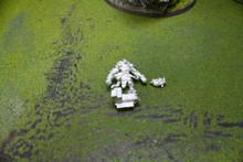 Reaper Reptus Hero Lot 5400 Blue Table Painting Store
