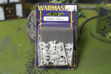 Warmaster Chaos Marauders Lot 5748 Blue Table Painting Store