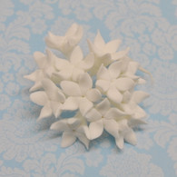 Pointy Stephanotis Bunch - White