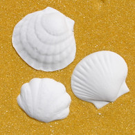 Seashell Assortment 1 (10 per box)